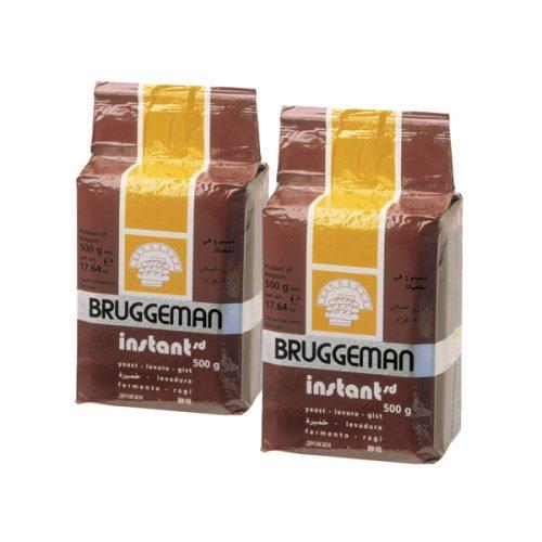 Yeast Bruggeman Brown