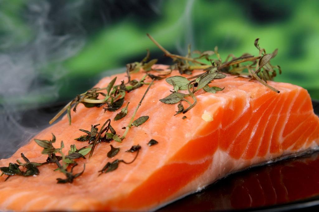 manfaat daging salmon