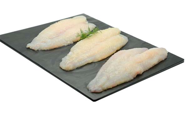 dory - maanfaat konsumsi ikan patin